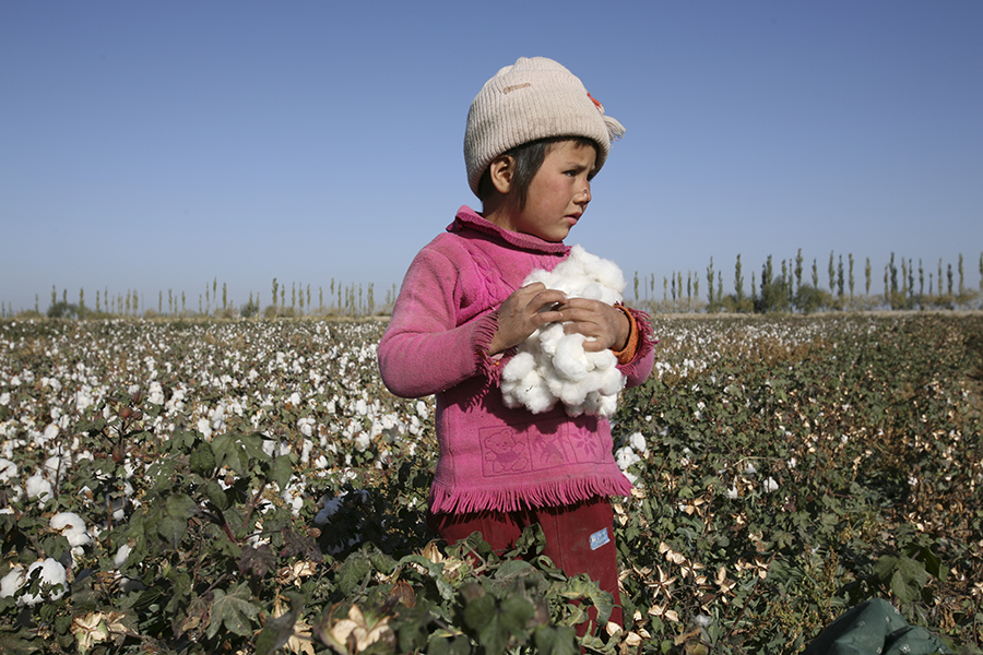 For Clues on a Post-Karimov Uzbekistan, Look to the Cotton Harvest ...