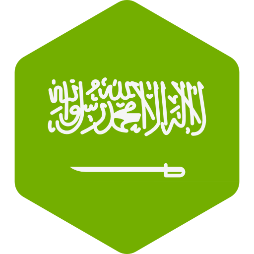 Freedom in the World 2019   Saudi Arabia Country Report