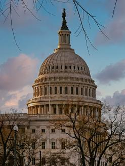 United States Capitol Building. Washington, DC. Editorial credit: Darryl Brooks / Shutterstock.comL: