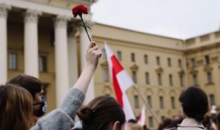 Peaceful protests in Belarus carnation flower